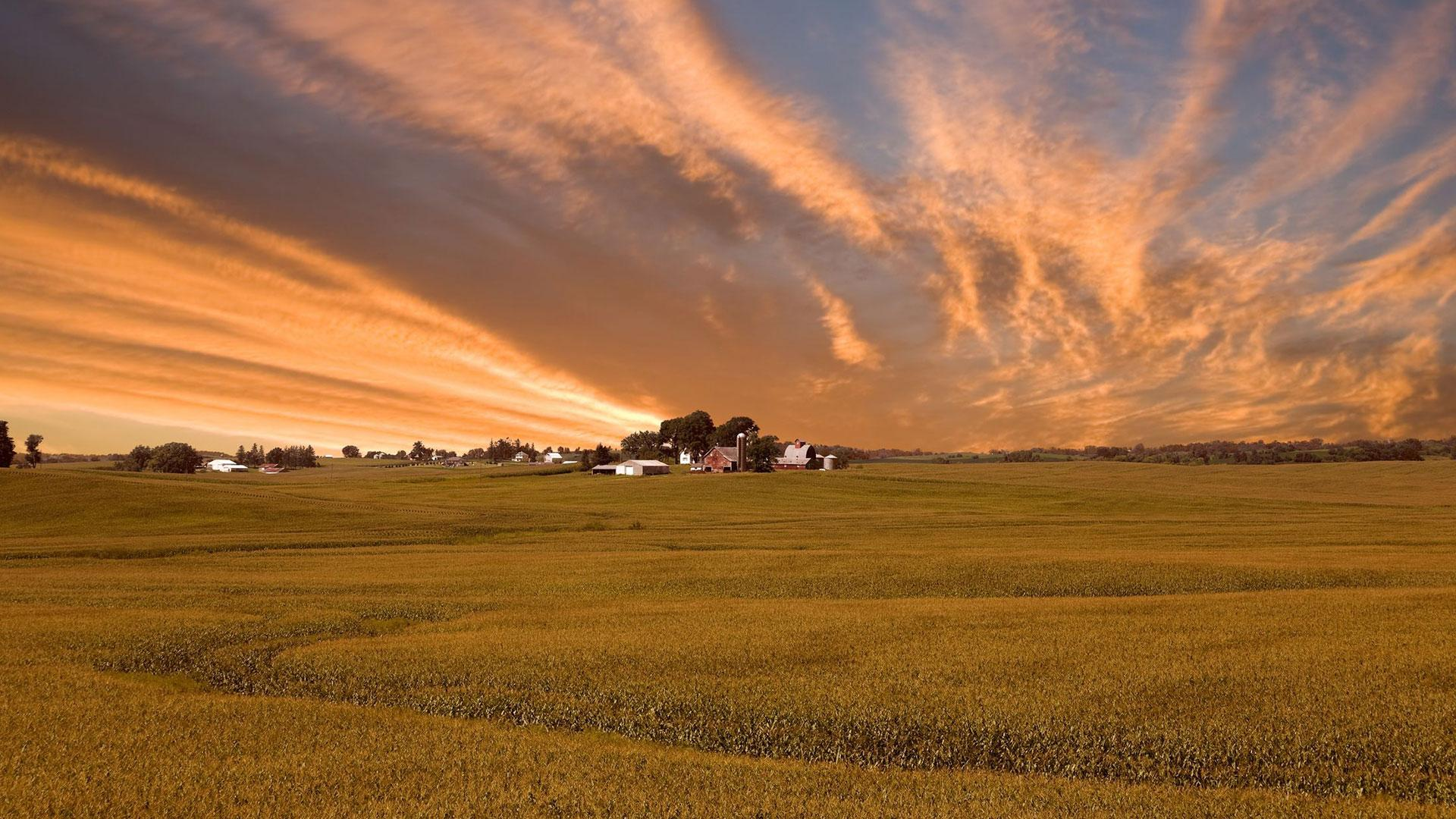 Buying & SellingIowa Farm Land